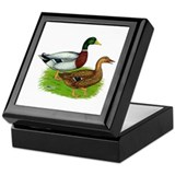 Mallard Ducks Keepsake Box