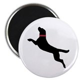 "Cute Dock jumping 2.25"" Magnet (100 pack)"