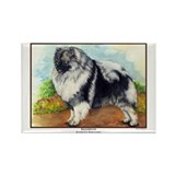 Keeshond Painting Rectangle Magnet
