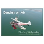 The art of wingwalking large poster