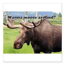 Wanna moose around? Alaskan moose Square Car Magne