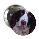 Cold Wet Nose Button
