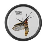 Common Eastern Firefly Large Wall Clock