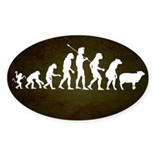 Modern Evolution Decal