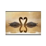 Love Swans Rectangle Magnet (100 pack)
