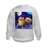 Cute Pomeranian designs Sweatshirt