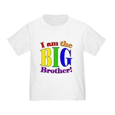 Big Brother Rainbow T