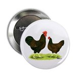"Barnevelder Chickens 2.25"" Button (10 pack)"