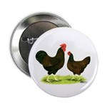 "Barnevelder Chickens 2.25"" Button"