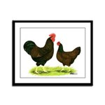 Barnevelder Chickens Framed Panel Print