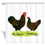 Barnevelder Chickens Shower Curtain