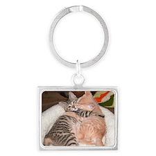 kitty Hug Landscape Keychain