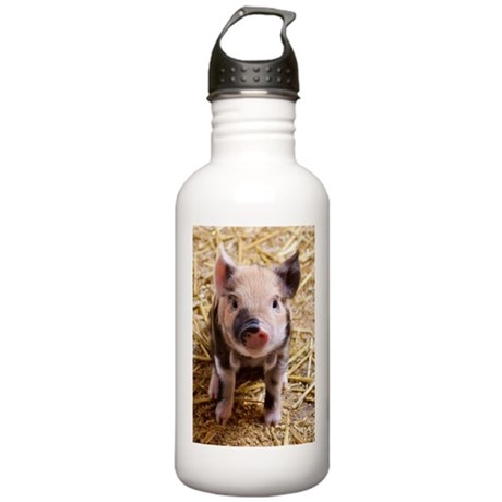 Piglet Stainless Water Bottle 1.0L