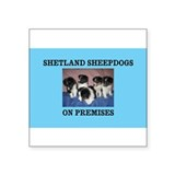 SHETLAND SHEEPDOGS ON PREMISES Sticker