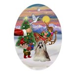 Treat for a Shih Tzu Oval Ornament