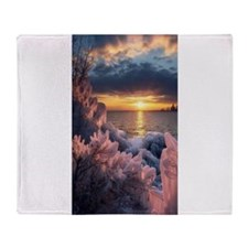 Darcy My Good Opinion iPad 2 Hard Case