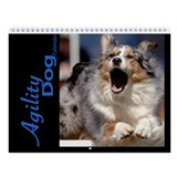 Agility Dog Wall Calendar
