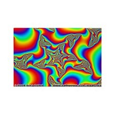 Fractal R~13 Rectangle Magnet (10 pack)