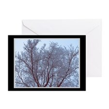 Pale Frost Holiday Cards (Pk of 10)