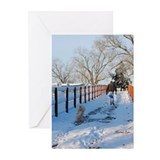 Happy New year Walkway Greeting Cards (Pk of 20)