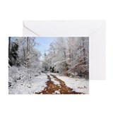 Tranquil Snowcovered Path Blank Cards (Pk of 10