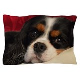 Cavalier King Charles Pillow Case