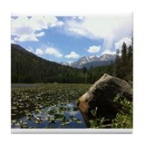 Fern Lake, Colorado Tile Coaster