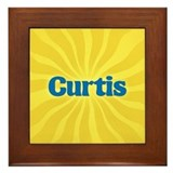 Curtis Sunburst Framed Tile
