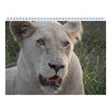 African Animal Wall Calendar