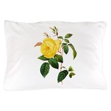 Pierre-Joseph Redoute Rose Pillow Case