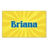 Briana Sunburst Rectangle Decal
