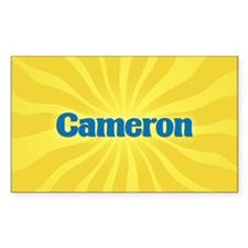 Cameron Sunburst Oval Decal