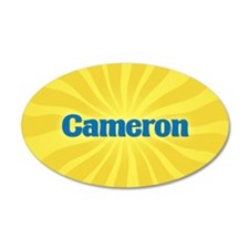 Cameron Sunburst Wall Decal