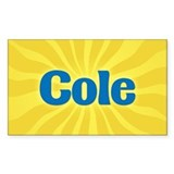 Cole Sunburst Rectangle Decal