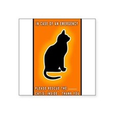 Cat Emergency Sticker Orange Sticker
