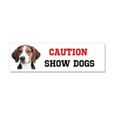 Caution Show Hamiltons