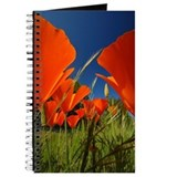 Cute California poppies Journal