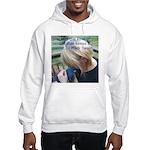 Hyacinth Macaw - Pam Hooded Sweatshirt