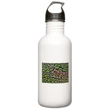 Water lilies Water Bottle