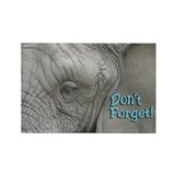 Don't Forget Elephant Magnet