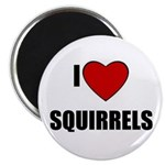 I LOVE SQUIRRELS Magnet