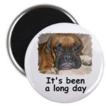 IT'S BEEN A LONG DAY BOXER SAD DOG LOOK Magnet