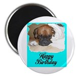 HAPPY BIRTHDAY BOXER PUPPY LOOK Magnet