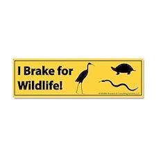 I Brake for Wildlife - Car Bumper Magnet