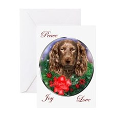 Boykin Spaniel Greeting Card