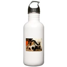 Jack Russell Terrier Puppy Chewing Stick Sports Water Bottle