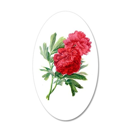 Red Peonies Drawn From Nature 35x21 Oval Wall Deca