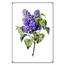 Lilac Drawn From Nature Banner