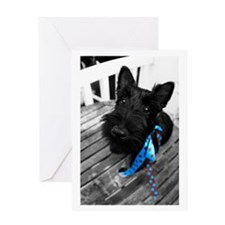 Scottie dog puppy Greeting Card