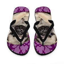Pug Puppy Flip Flops